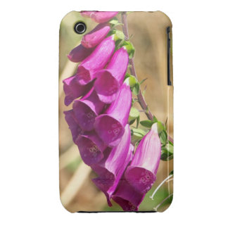 Purple Blossoms of the Foxglove iPhone 3 Case