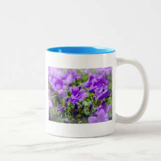 purple blossoms vines plants flora bellflower Two-Tone coffee mug