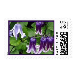 Purple Blue Bells Postage