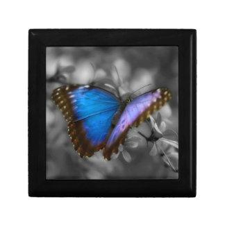 Purple Blue Butterfly Jewelry Box