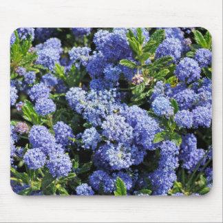 Purple Blue Ceanothus Flowers Mouse Pad