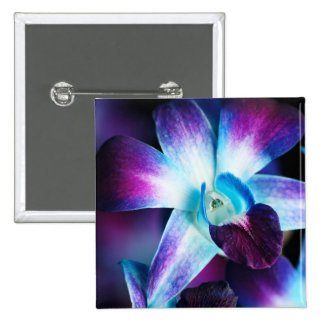 Purple & Blue Dendrobium Orchid Customized Orchids Buttons