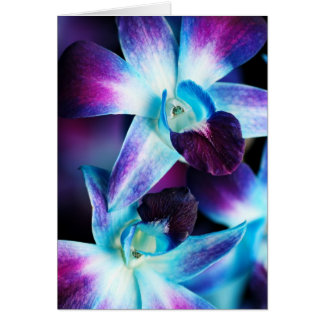Purple & Blue Dendrobium Orchid Customized Orchids Cards