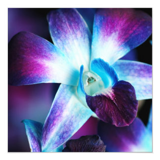 Purple & Blue Dendrobium Orchid Customized Orchids Invitation