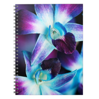 Purple & Blue Dendrobium Orchid Customized Orchids Notebook