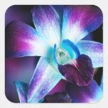 Purple & Blue Dendrobium Orchid Customized Orchids Square Sticker