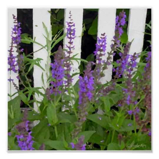 Purple Blue Flower Fence Poster