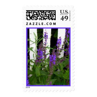 Purple Blue Flowers Fence Postage Stamp