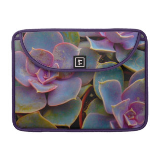 Purple Blue Green Succulent Cactus Plant Sleeves For MacBook Pro