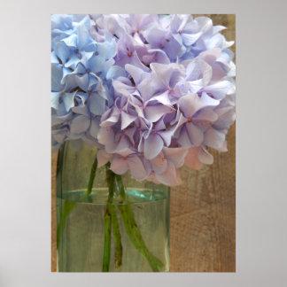 Purple & Blue Hydrangeas In Mason Jar Poster