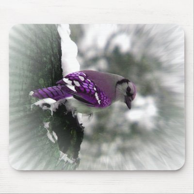 Purple blue jay mouse mat