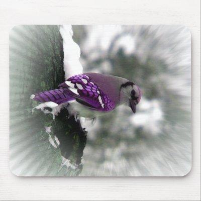 Purple blue jay mouse mat