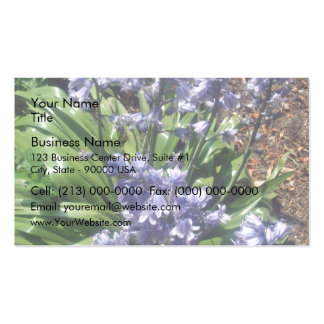 Purple Bluebells in full bloom Double-Sided Standard Business Cards (Pack Of 100)