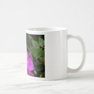 Purple Bougainvillea flower in bloom Coffee Mug