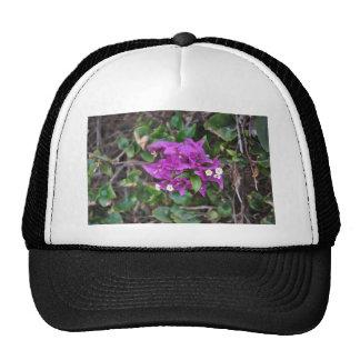 Purple Bougainvillea Photo Trucker Hat