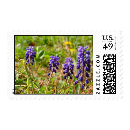 Purple Bud Flower Stamps