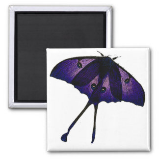 Purple Butterfly Drawing Photograph Sketch 2 Inch Square Magnet