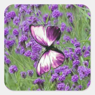 Purple_Butterfly_Lavender, Pegatina Cuadrada