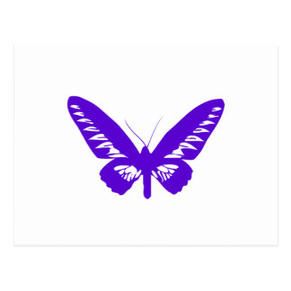 Purple Butterfly Postcard
