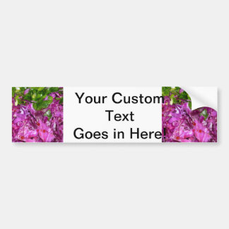 purple cabbage green onions vegetable food bumper sticker