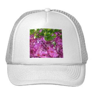 purple cabbage green onions vegetable food trucker hat