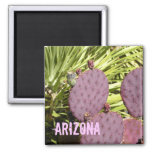 Purple cactus Arizona magnet
