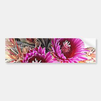 Purple Cactus Bloom Bumper Sticker