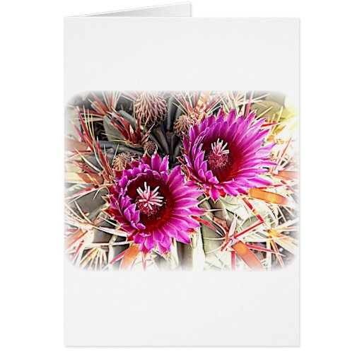 Purple Cactus Bloom Greeting Card