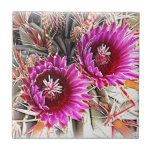 Purple Cactus Bloom Tiles