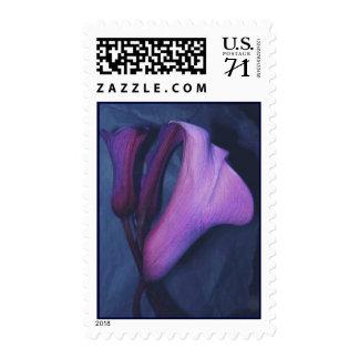 Purple Callas Postage