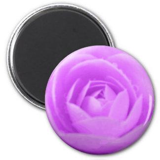 Purple Camellia Magnet
