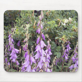 Purple Canterbury Bells 1 Mousepad