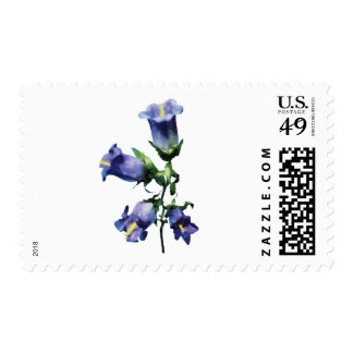 Purple Canterbury Bells Postage Stamp