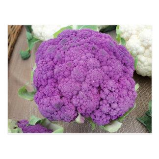 Purple Cauliflower.  Photo by Frederick Meekins Postcard