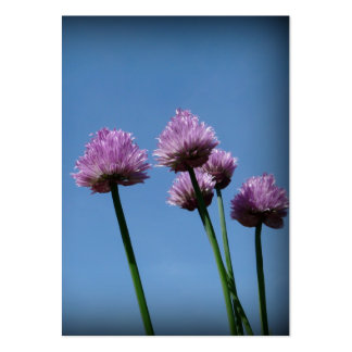 Purple Chive Blossoms and Blue Sky Artcard ACEO Business Card
