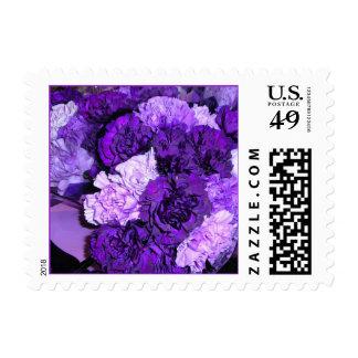 Purple Chrysanthemum Postage Stamp