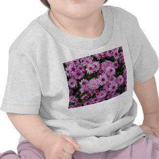 Purple Chrysanthemum X Morifolium Flowers T-shirts