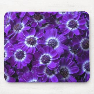 Purple Cineraria Mouse Pad