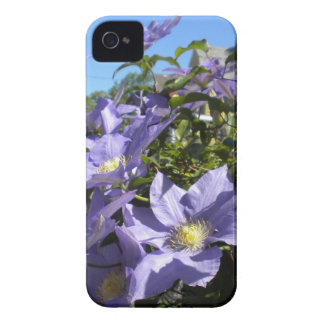 Purple Clematis Blackberry Bold case