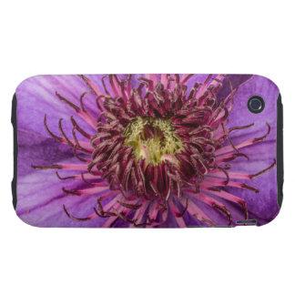 Purple Clematis Flower Tough iPhone 3 Case