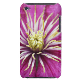 Purple Clematis flower in bloom during Spring iPod Case-Mate Cases