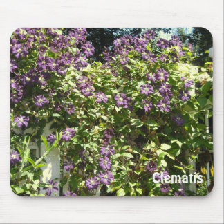 Purple Clematis Garden Mousepads