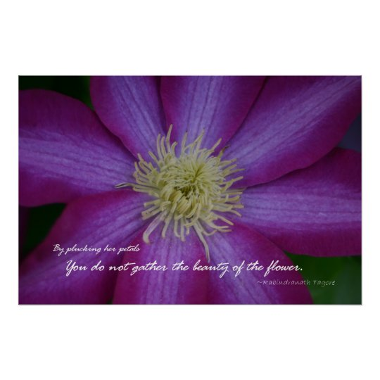 Purple clematis Rabindranath Tagore quote Poster
