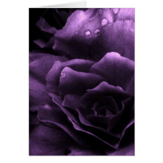 Purple Close Up of a Double Begonia Card