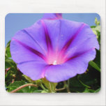 Purple Colored Morning Glory Flower Garden Backgro Mouse Pad