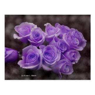 Purple colorized rose bunch postcard