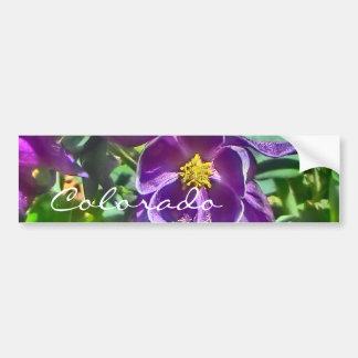 Purple columbine Colorado bumpersticker Bumper Sticker