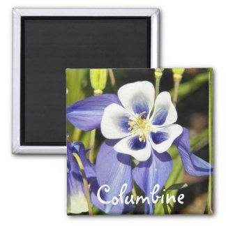 Purple Columbine Floral Magnet
