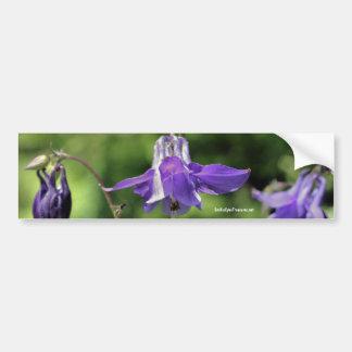 Purple Columbine Flower Photo Bumper Sticker