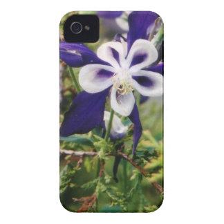 Purple Columbines Case-Mate iPhone 4 Cases